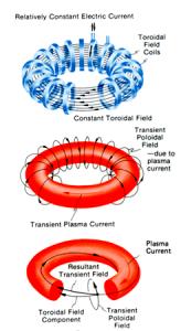 A diagram of the Tokomak RIng