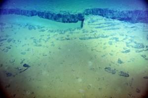 seafloor l